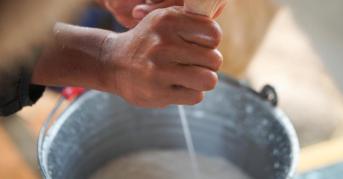 rebanho leiteiro: 6 dicas para aumentar a produtividade